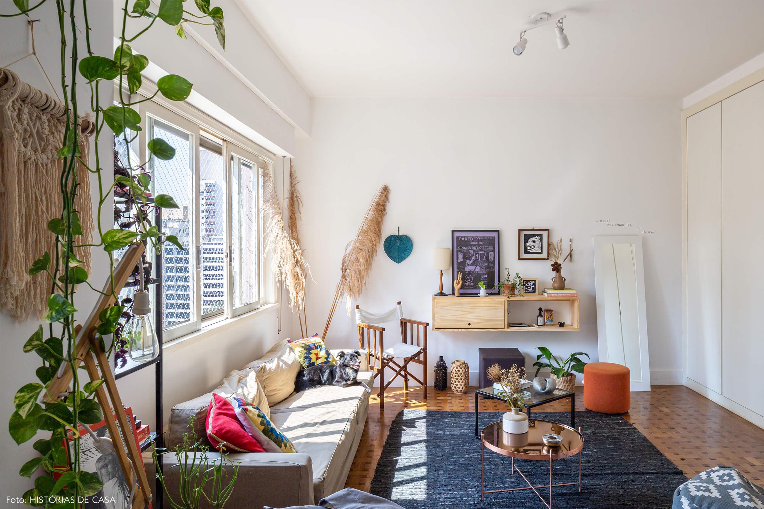 sala-com-tapete-azul-e-plantas
