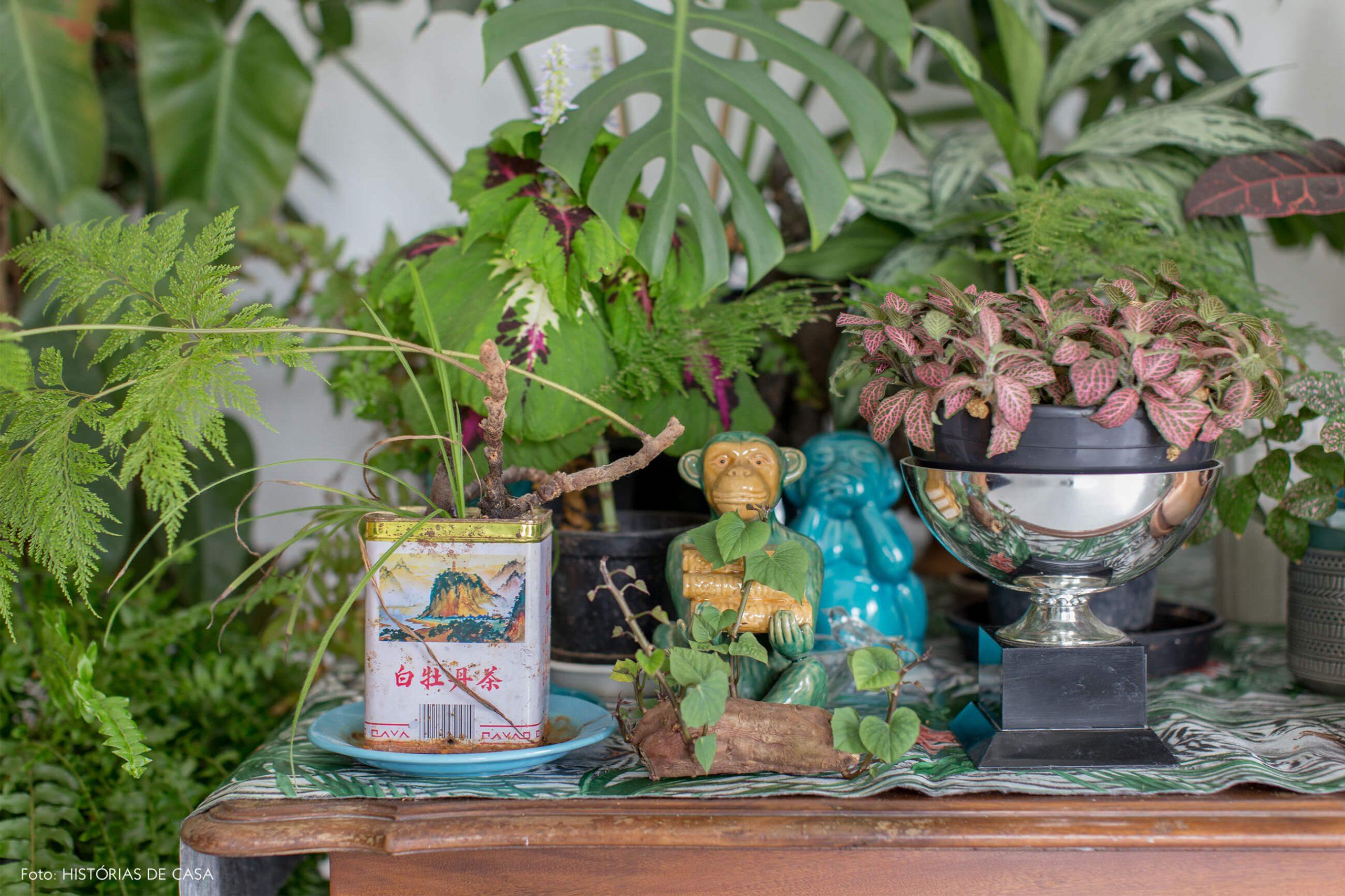 objetos-em-omoda-de-madeira-e-plantas