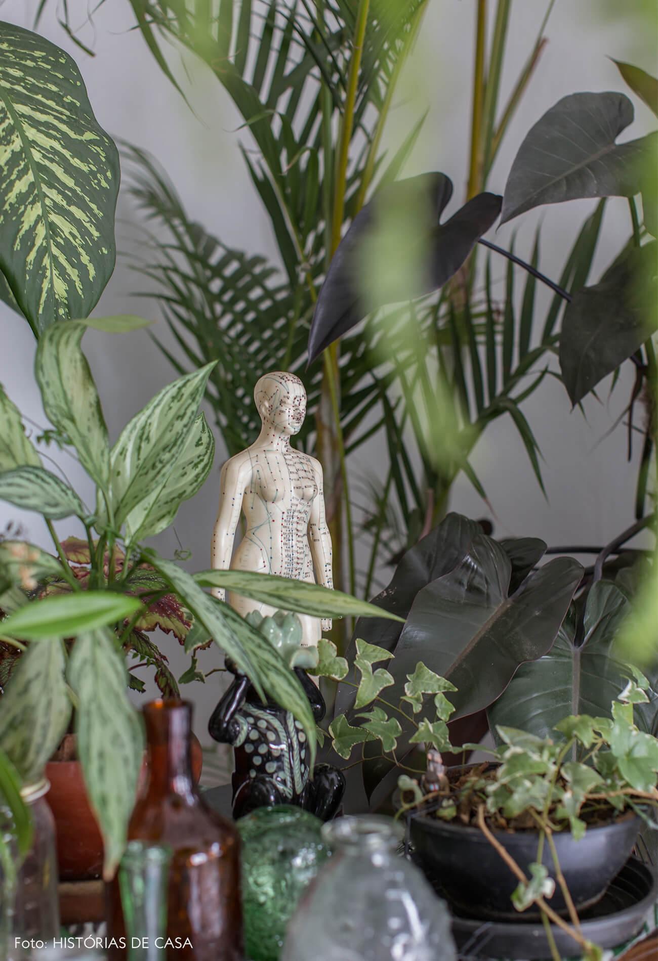 detalhe-plantas