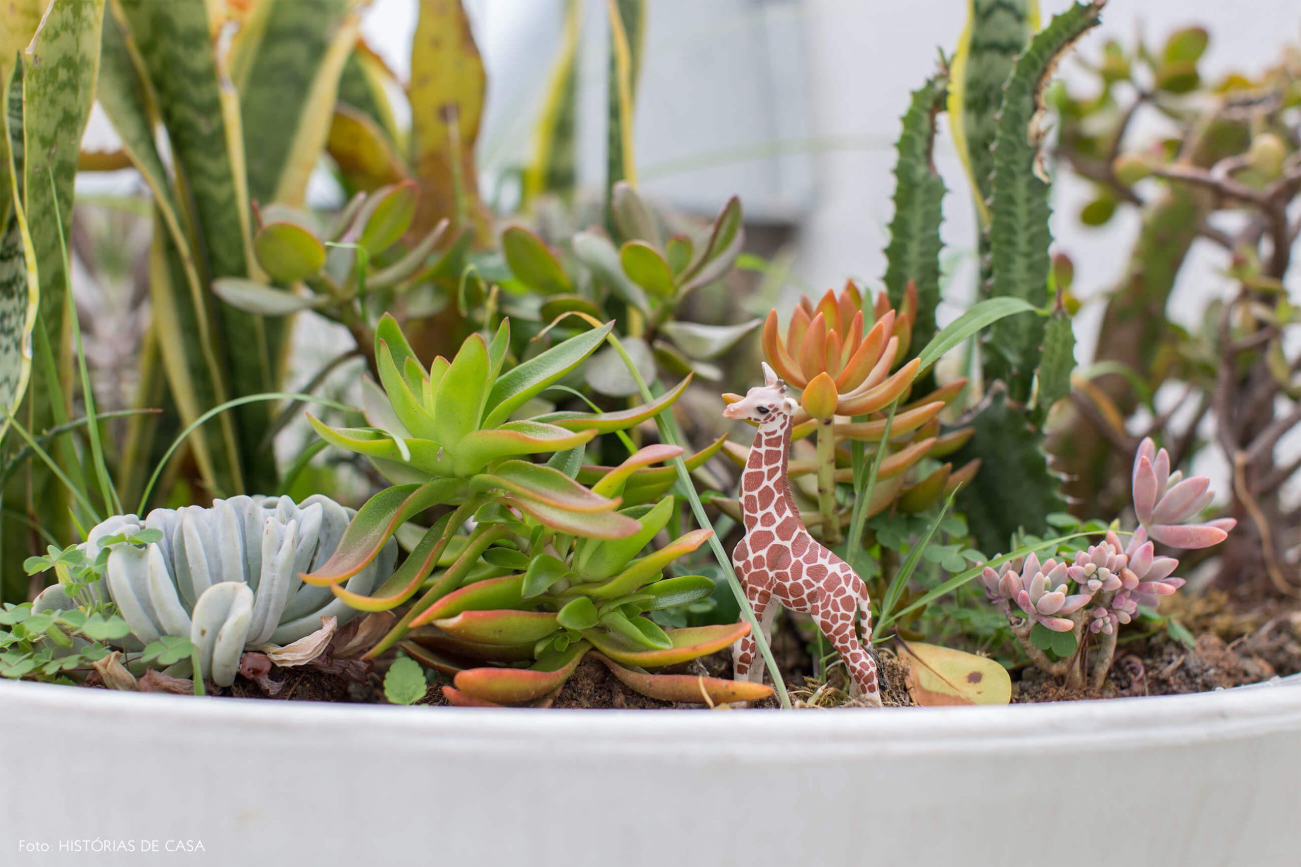 girafa-em-plantas