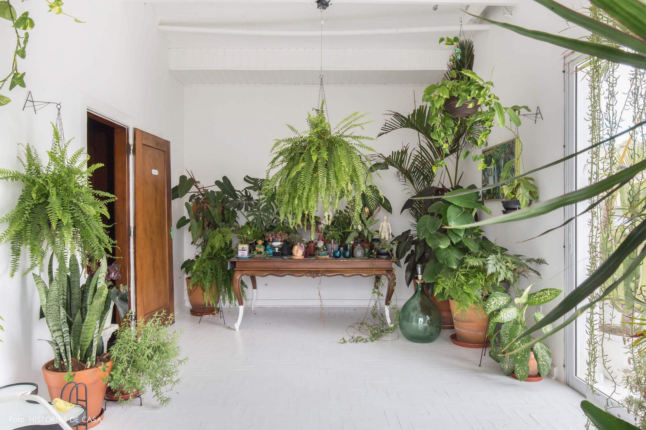 sala-com-plantas-e-mesa-de-madeira