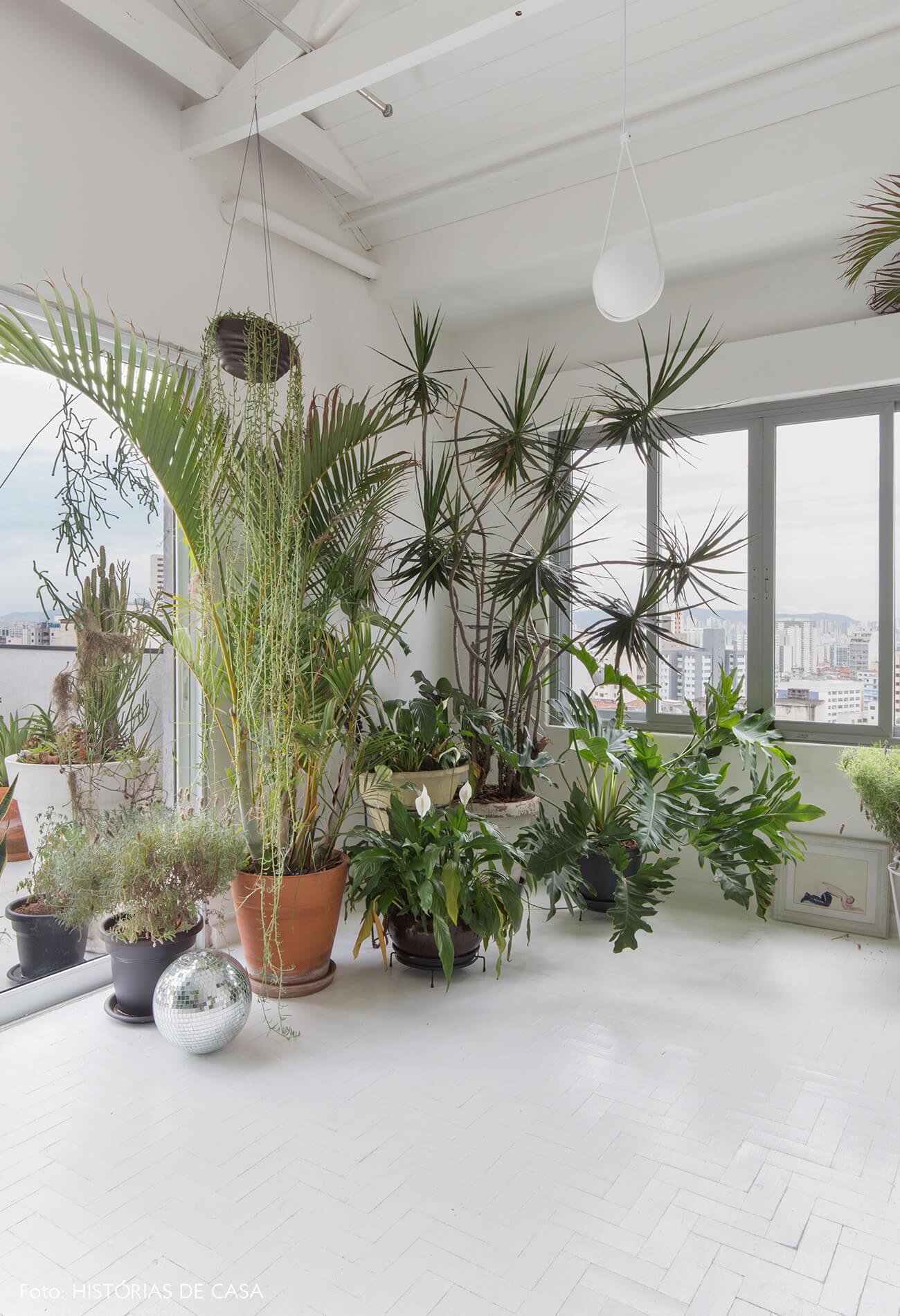 sala-plantas