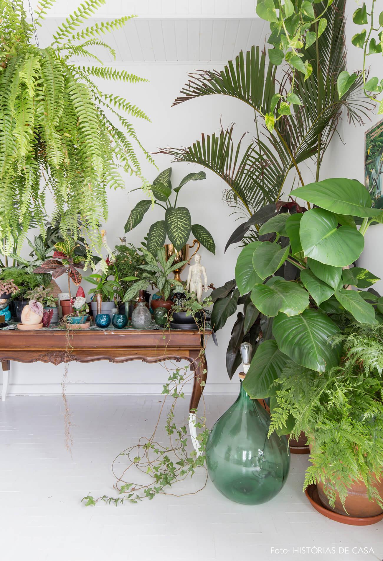 sala-plantas-e-mesa-madeira