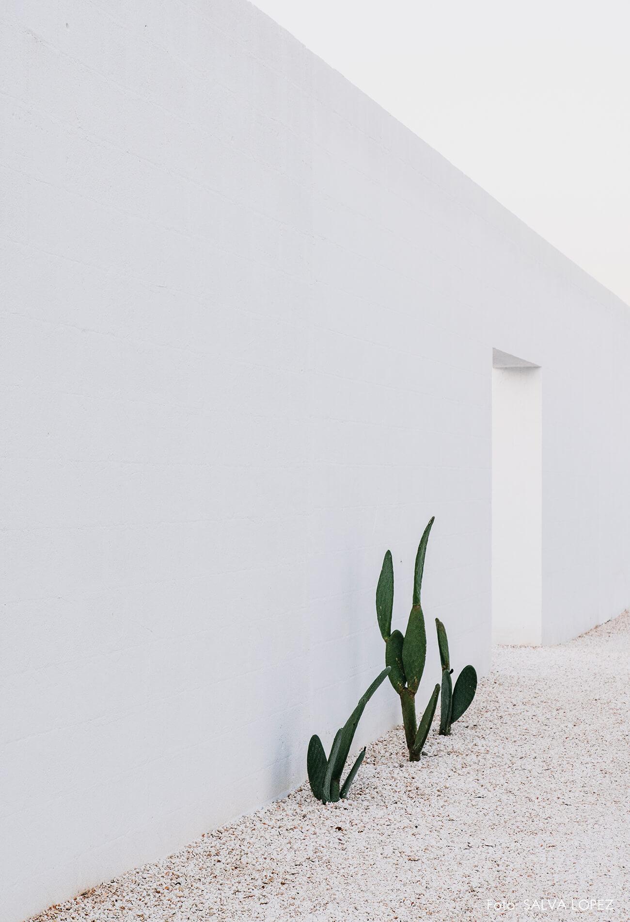 puglia-arquitetura-parede-branca