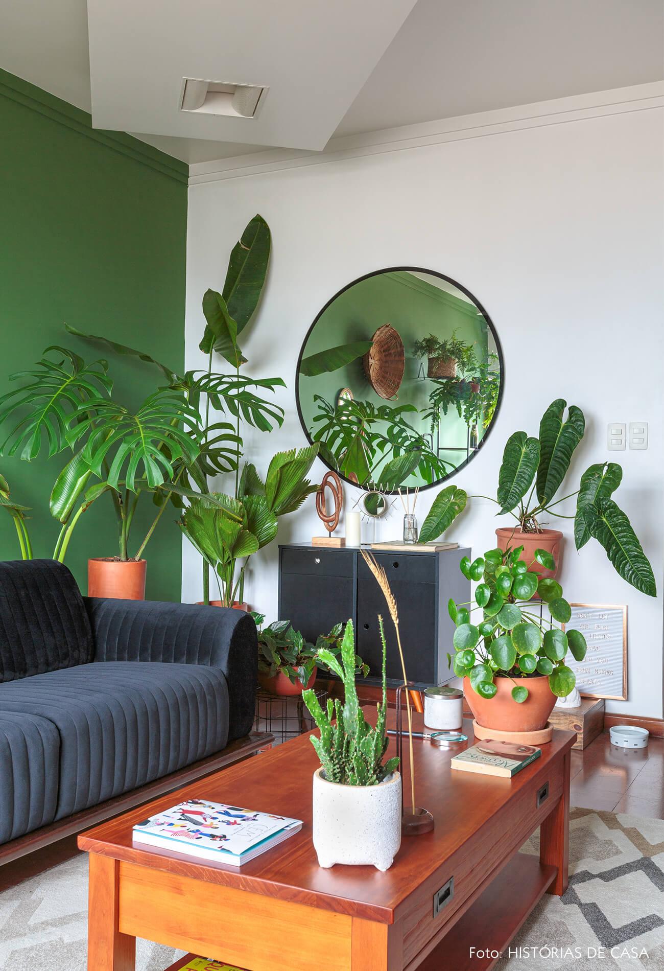 decoração sala com parede verde e muitas plantas
