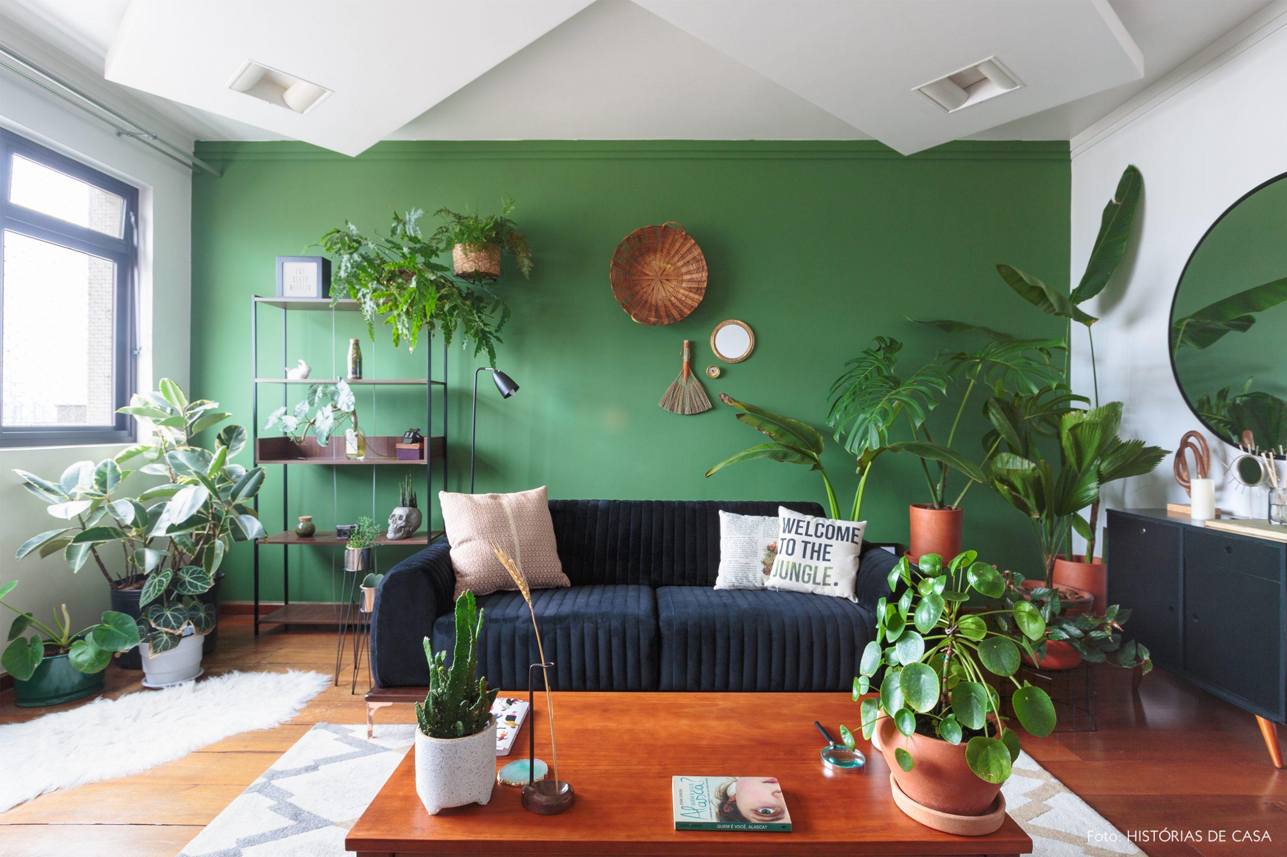 decoração sala com parede verde sofa preto e muitas plantas