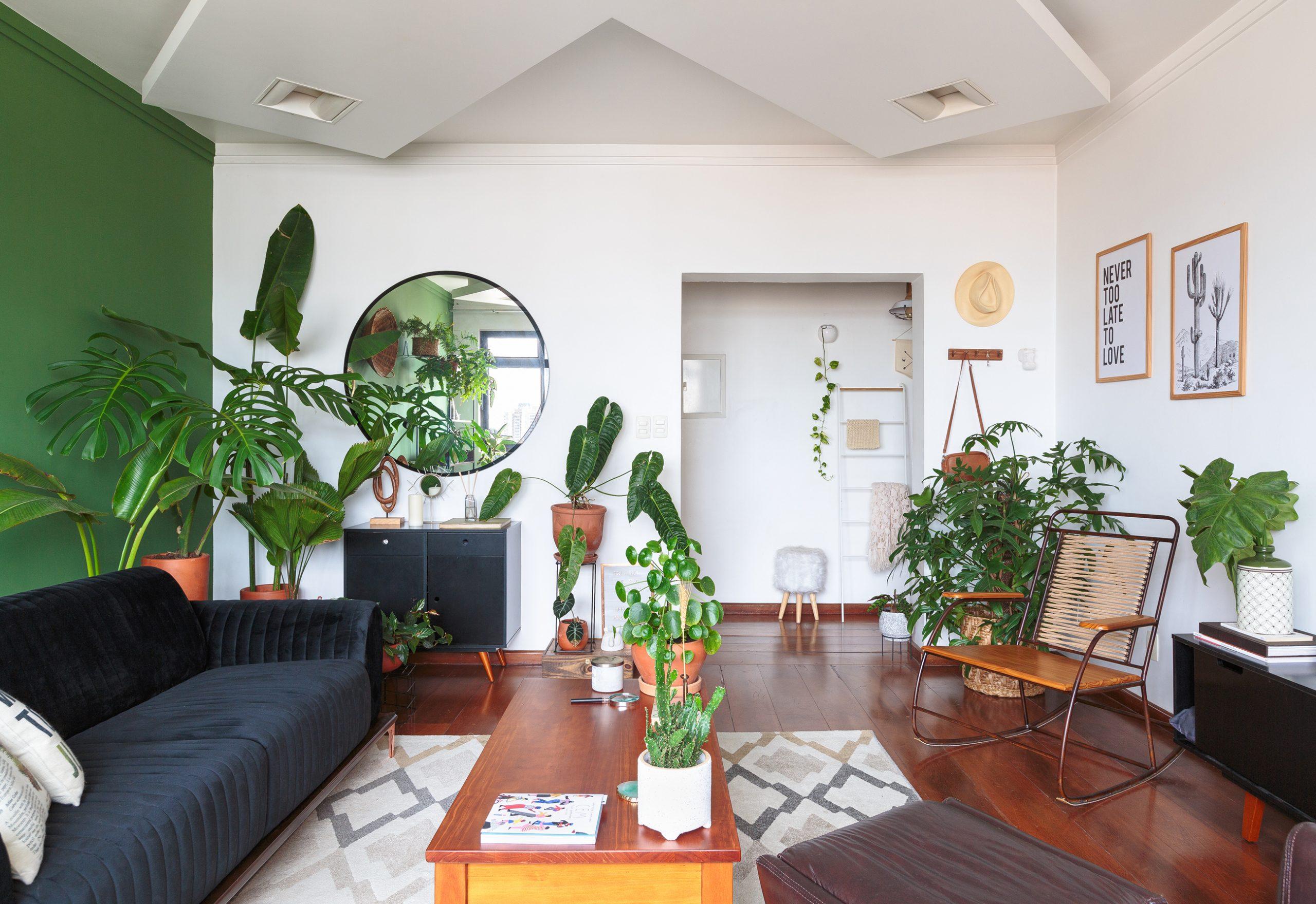 sala com parede verde e muitas plantas