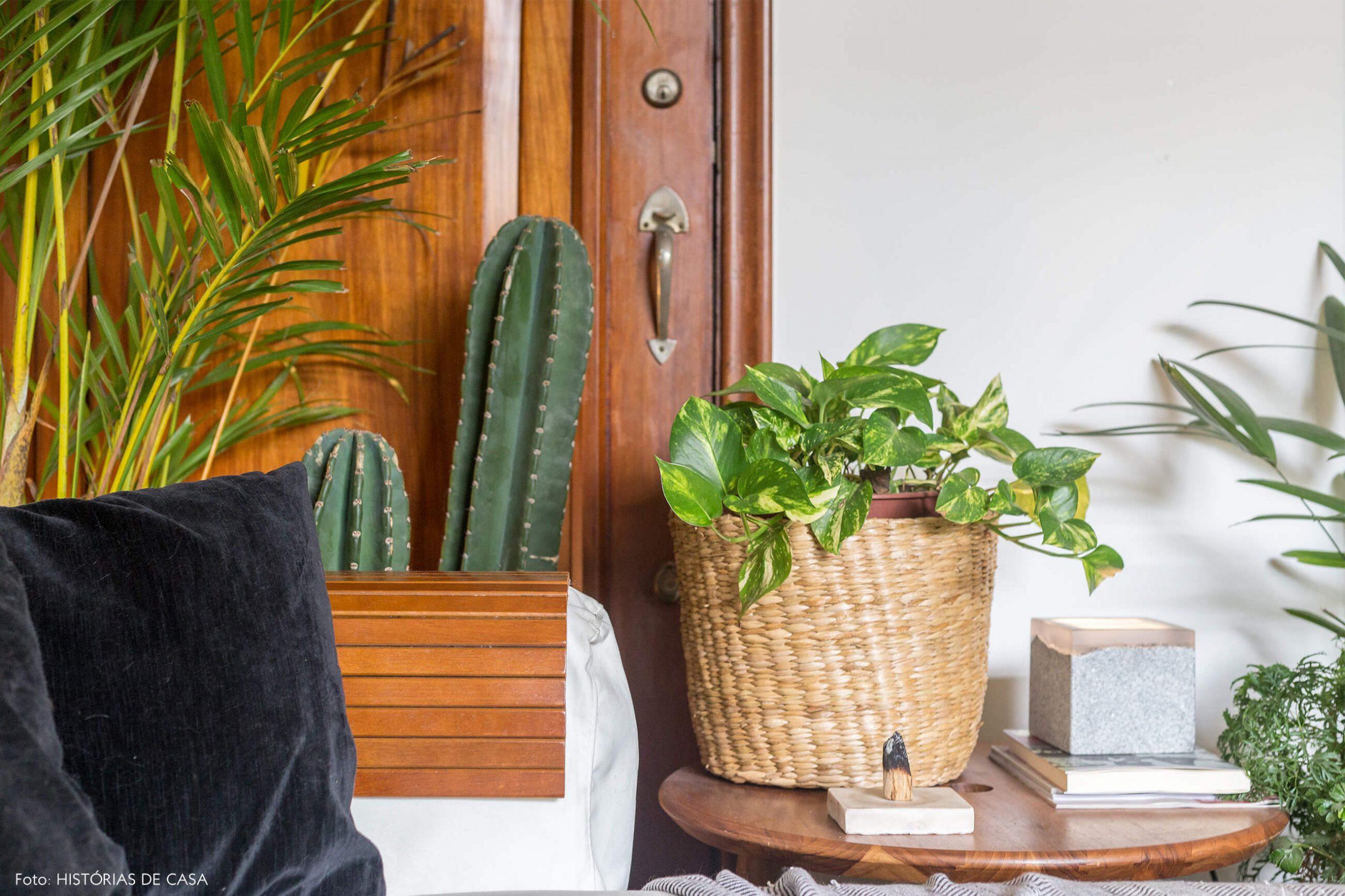 decoração sala com muitas plantas e cesto de palha