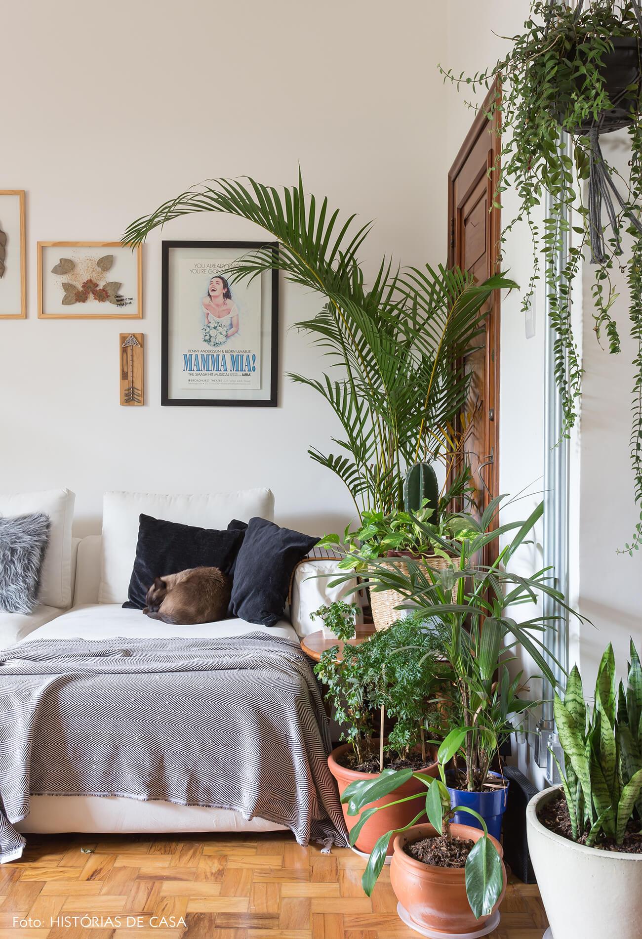decoração sala com muitas plantas e sofá branco
