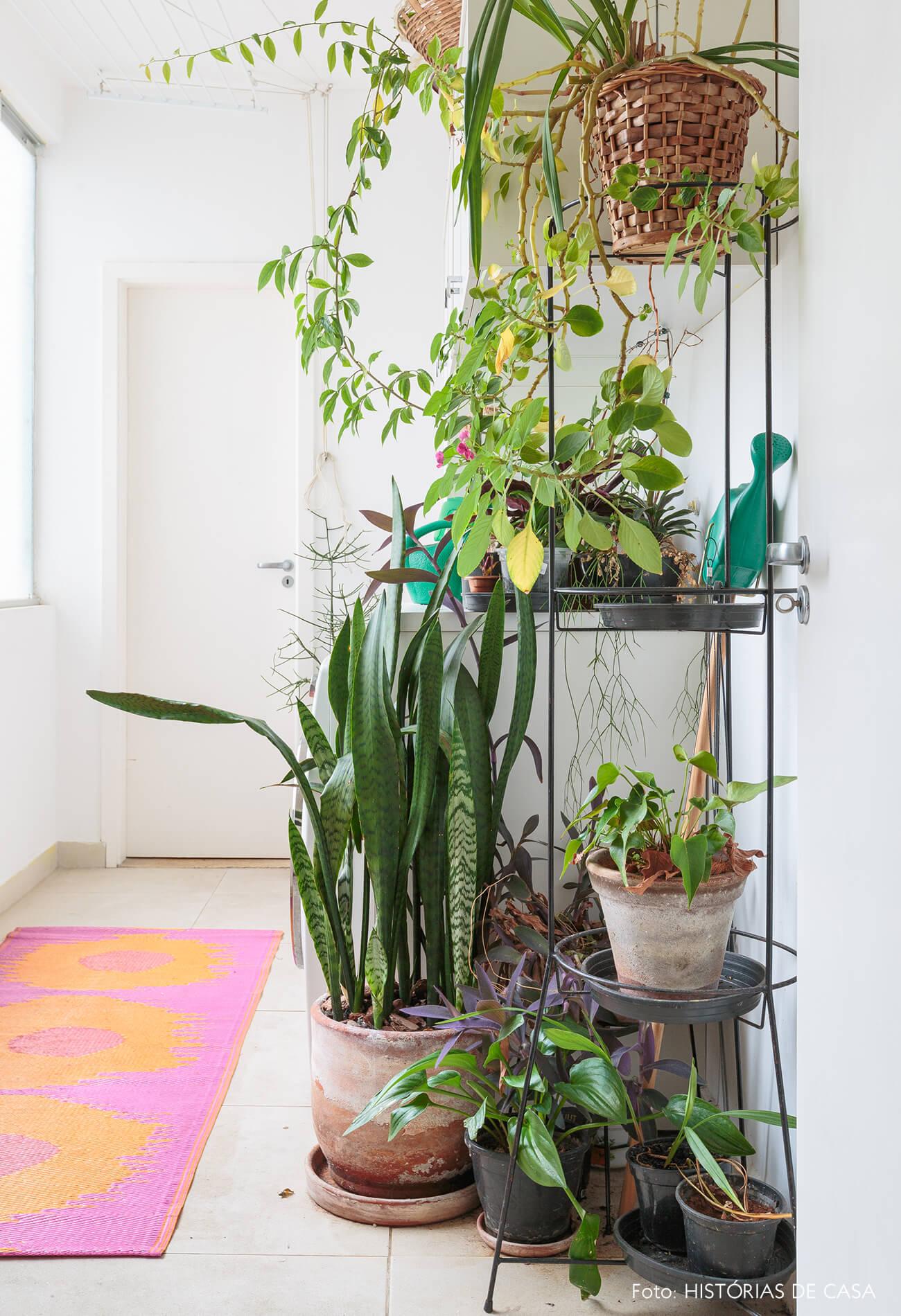 decoração area serviço com muitas plantas