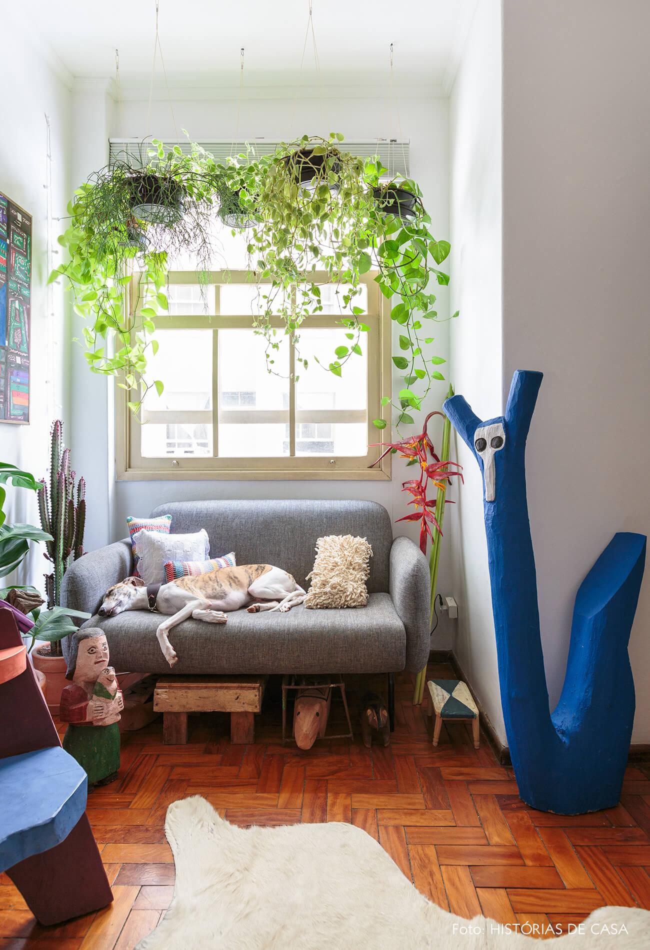 decoração com plantas e objetos decorativos de madeira