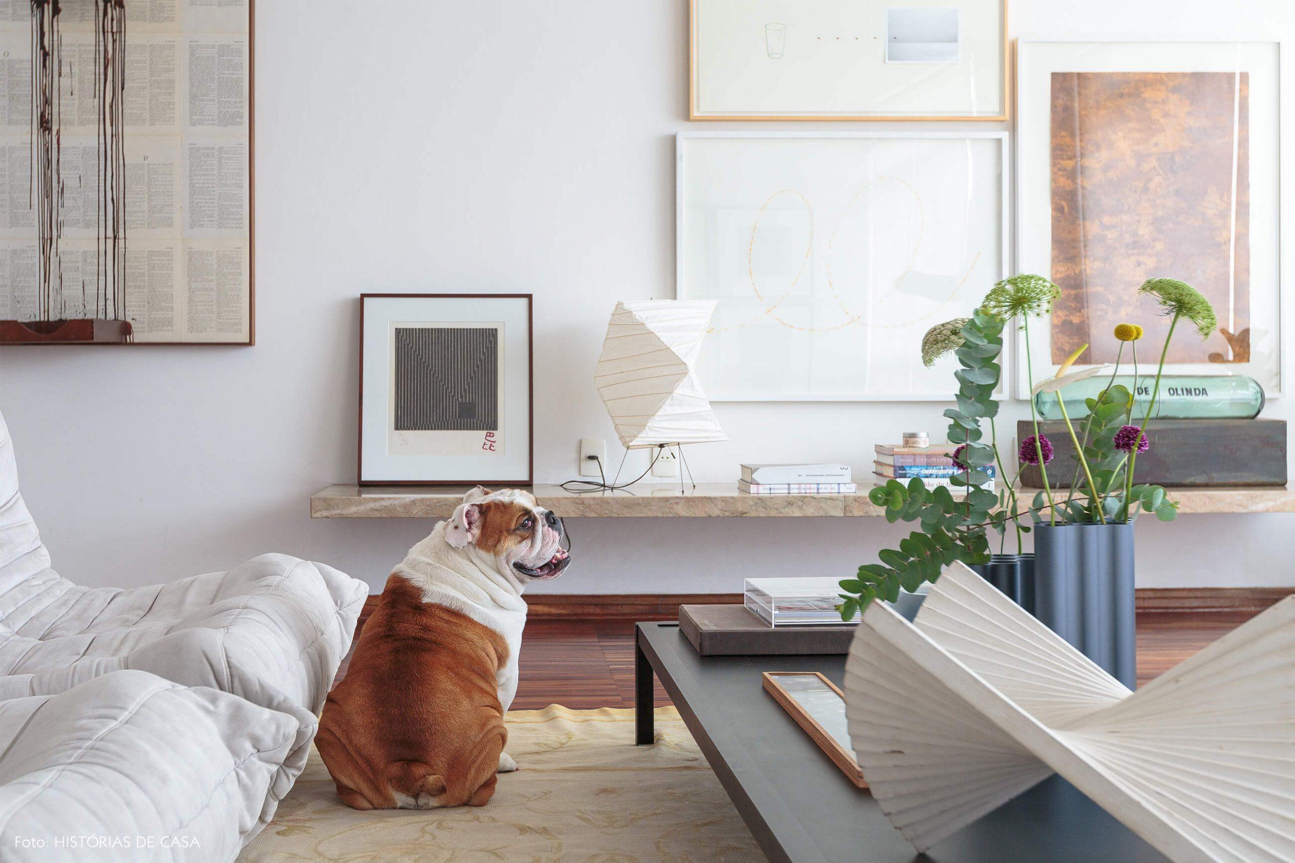 decoração cachorro na sala com obras de arte e luminarias de papel
