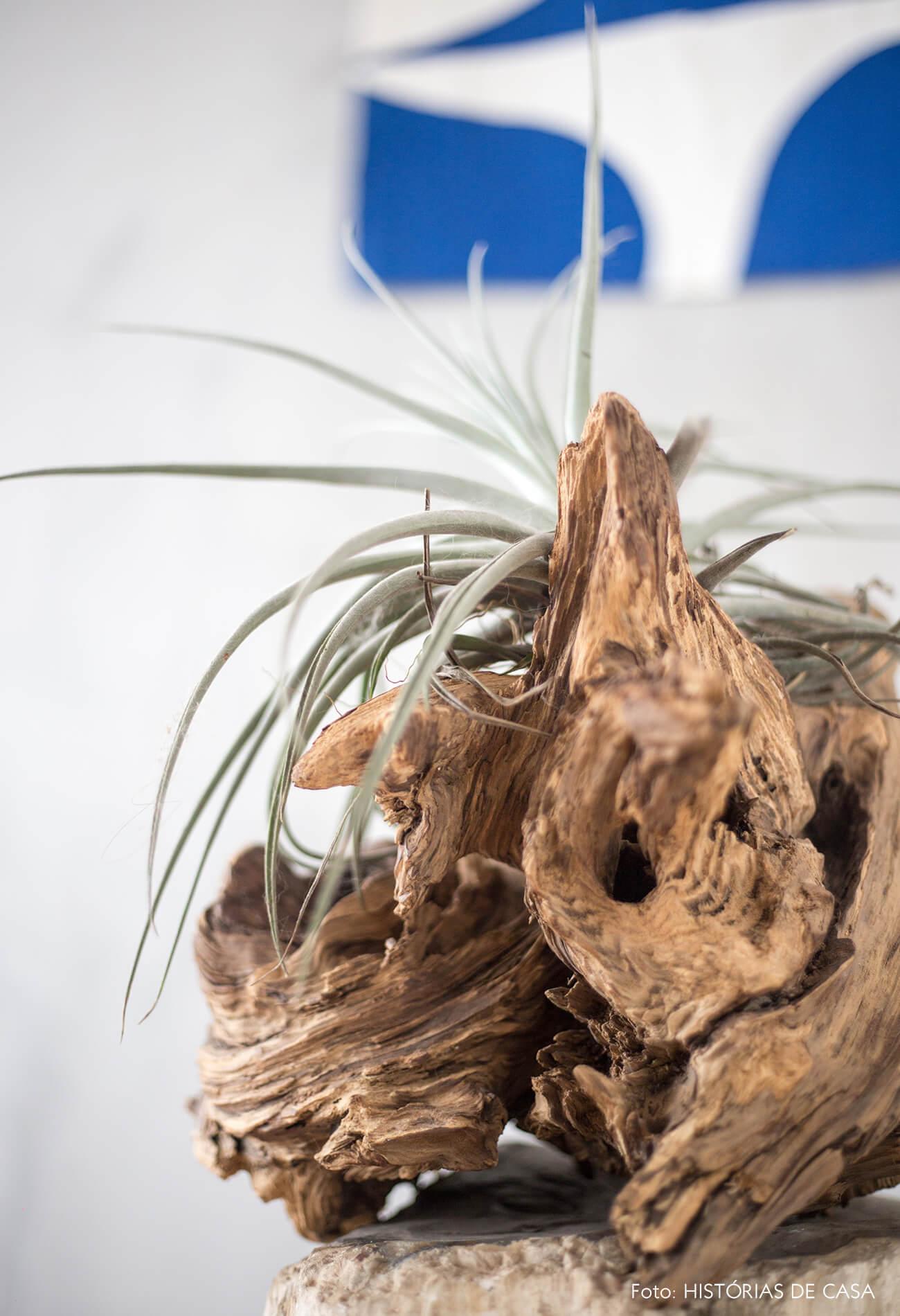 decoração detalhe tronco madeira