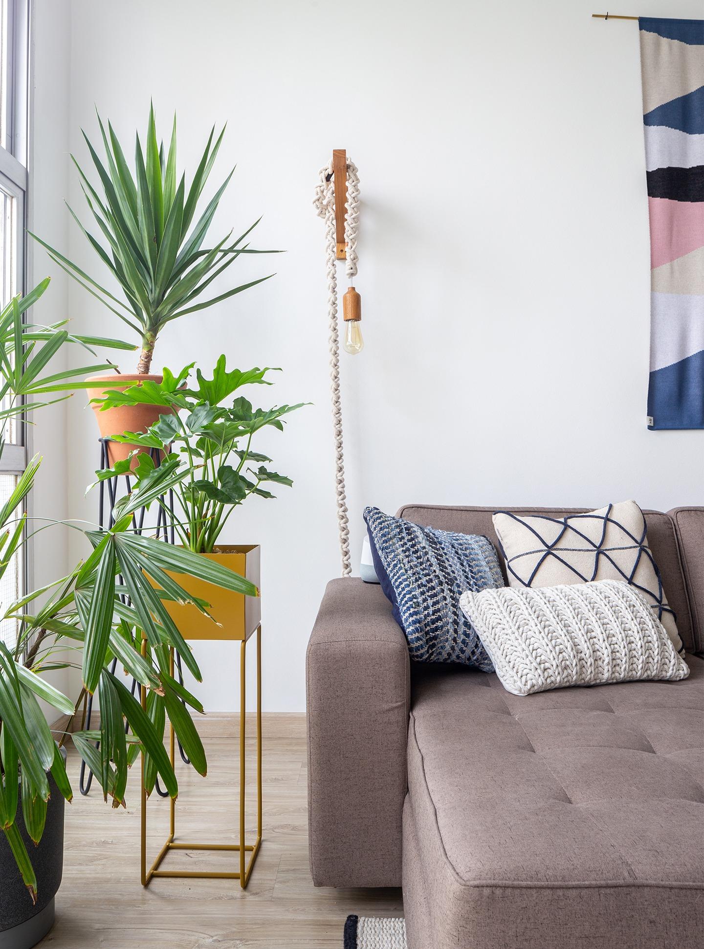 decoração sala com sofá cinza e plantas