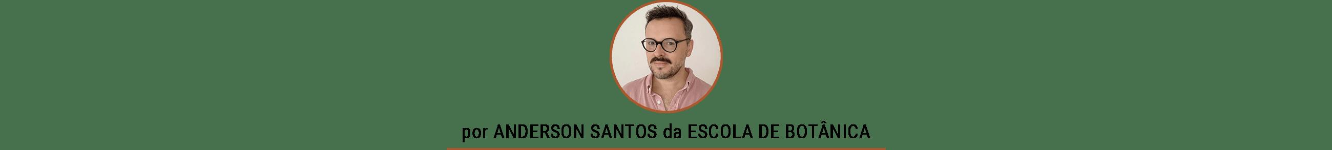 Como fazer mudas em casa por Anderson Santos da Escola de Botânica