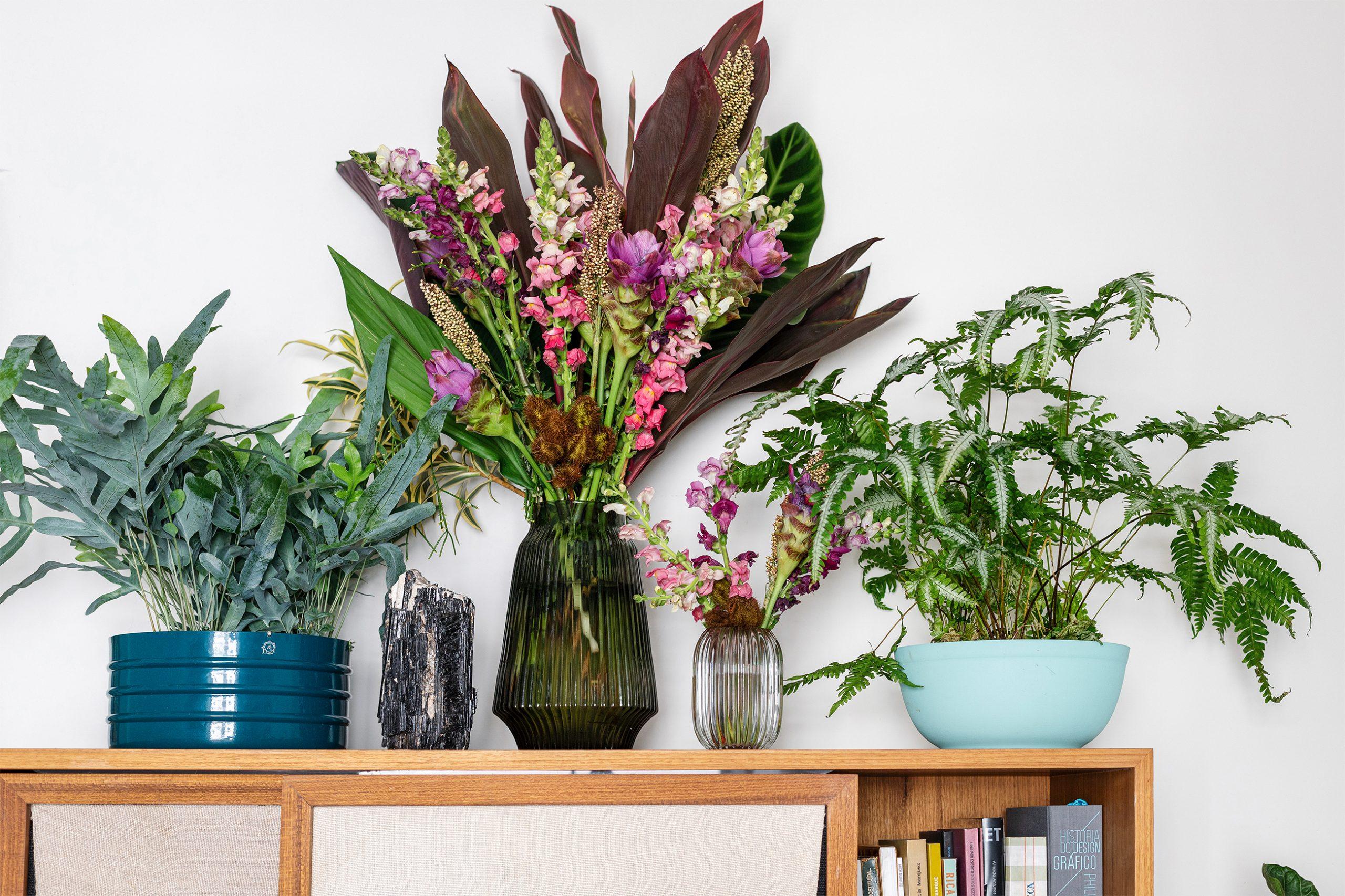 decoração plantas em armario sala