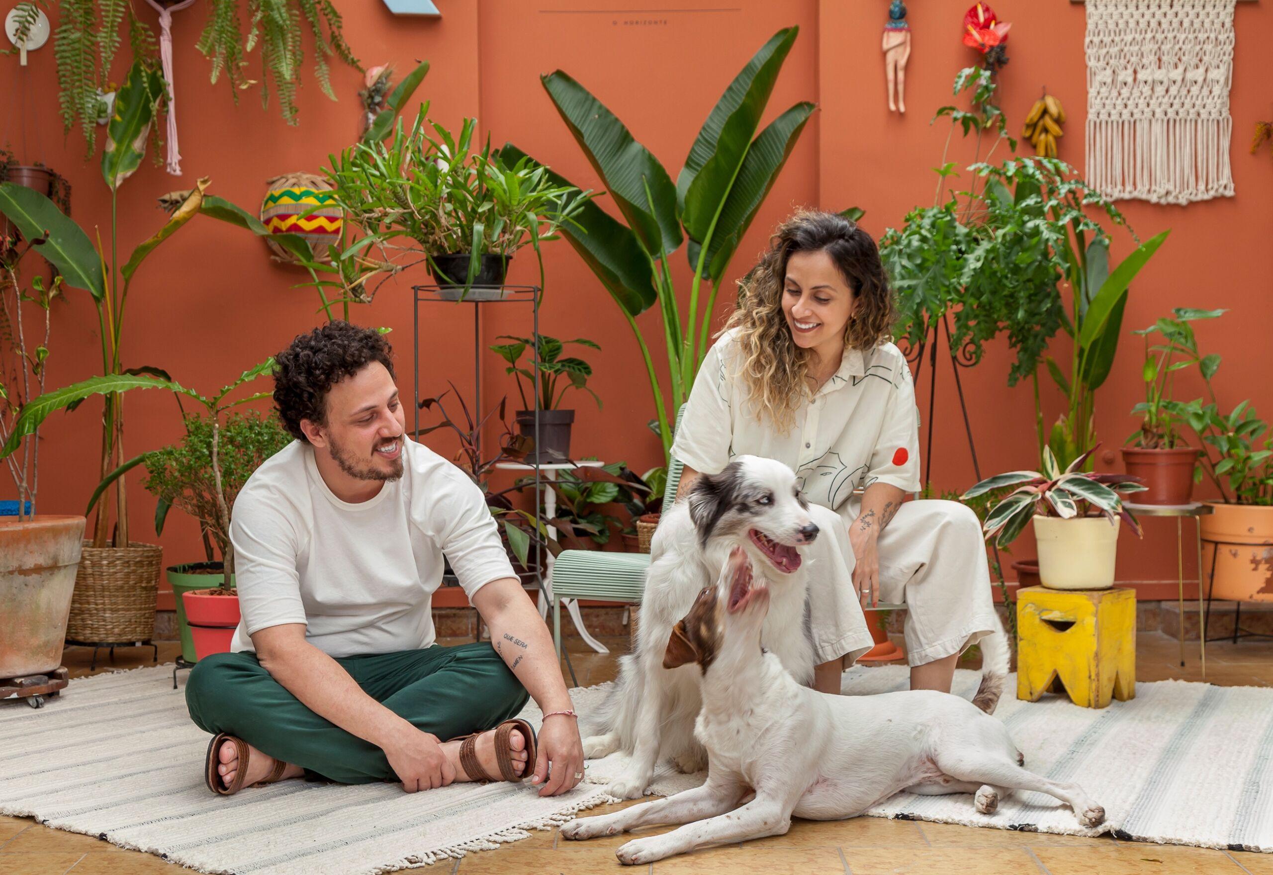 Pets em casa, dicas para quem tem cachorro e gato na quarentena, Histórias de Casa