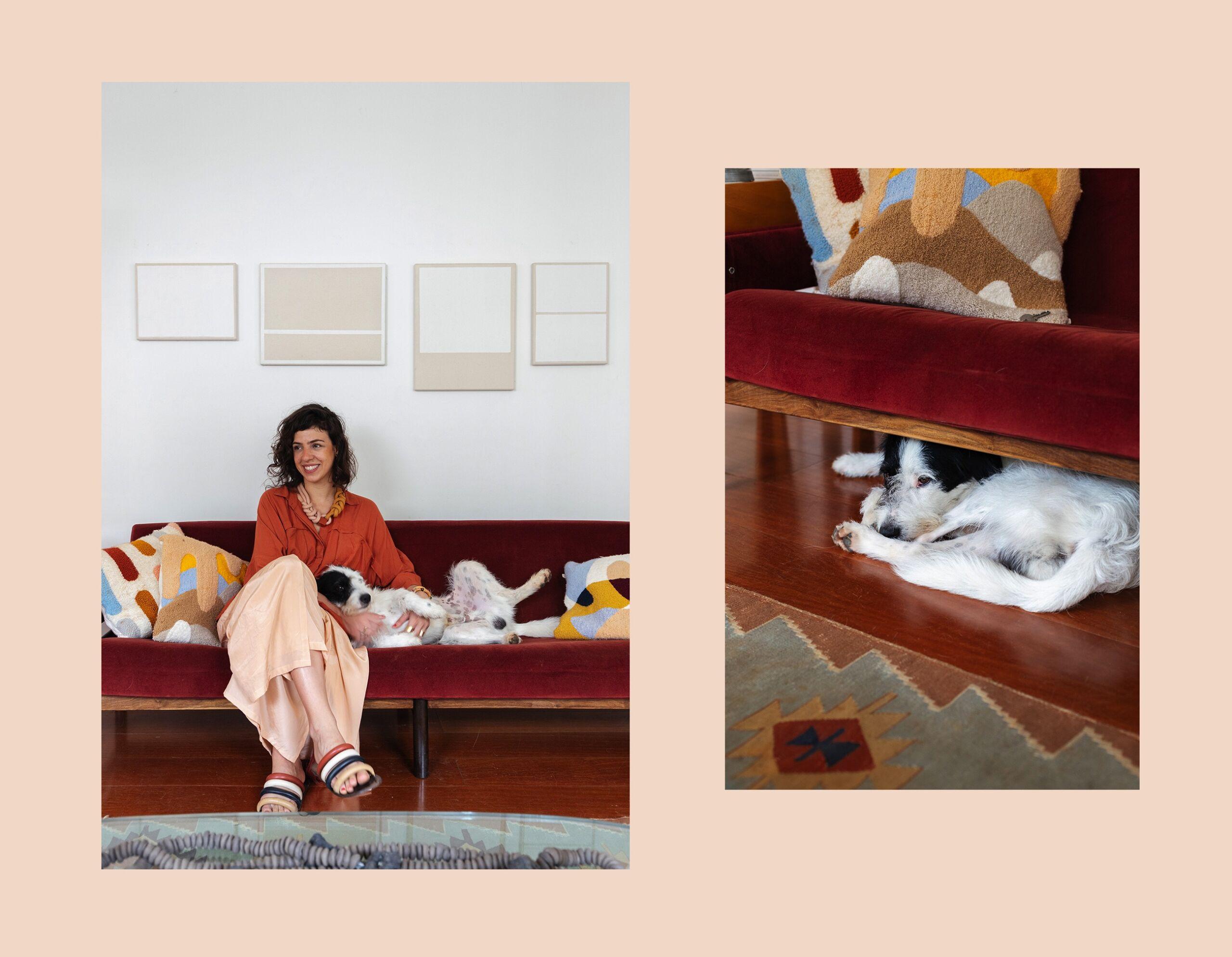 Pets em casa na quarentena, como lidar com os bichinhos na nova rotina