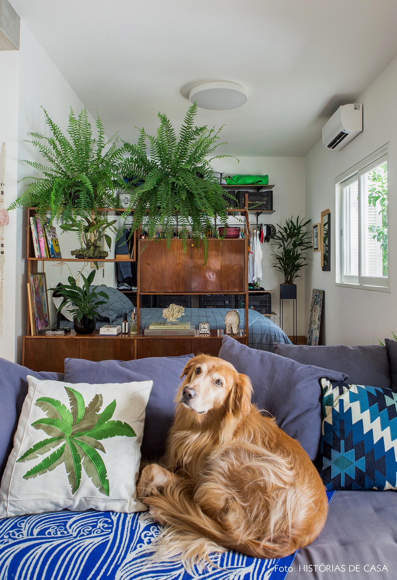 decoração apê pet sala quarto integrados plantas
