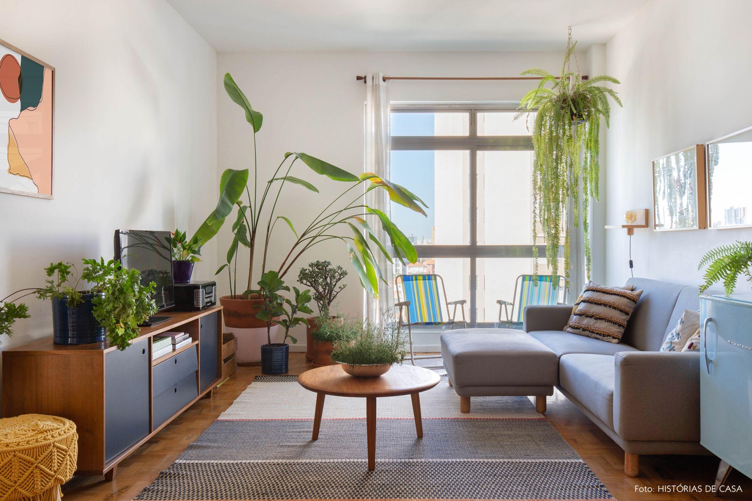 decoração quadros obrah sala com muitas plantas cadeira praia