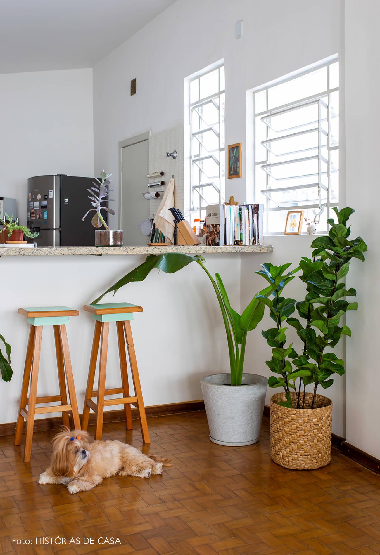 decoração sala cozinha integrados cesto planta ficus