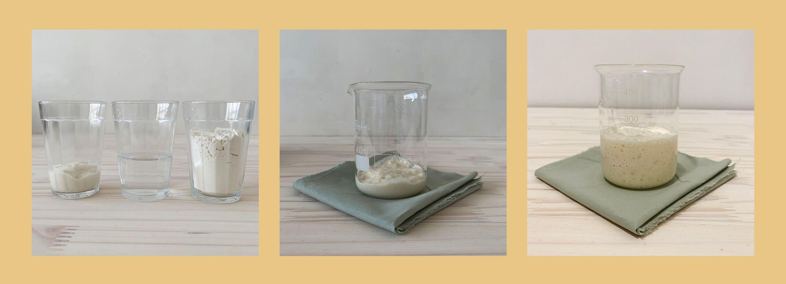 Pão de fermentação natural na quarentena com Na Fila do Pão