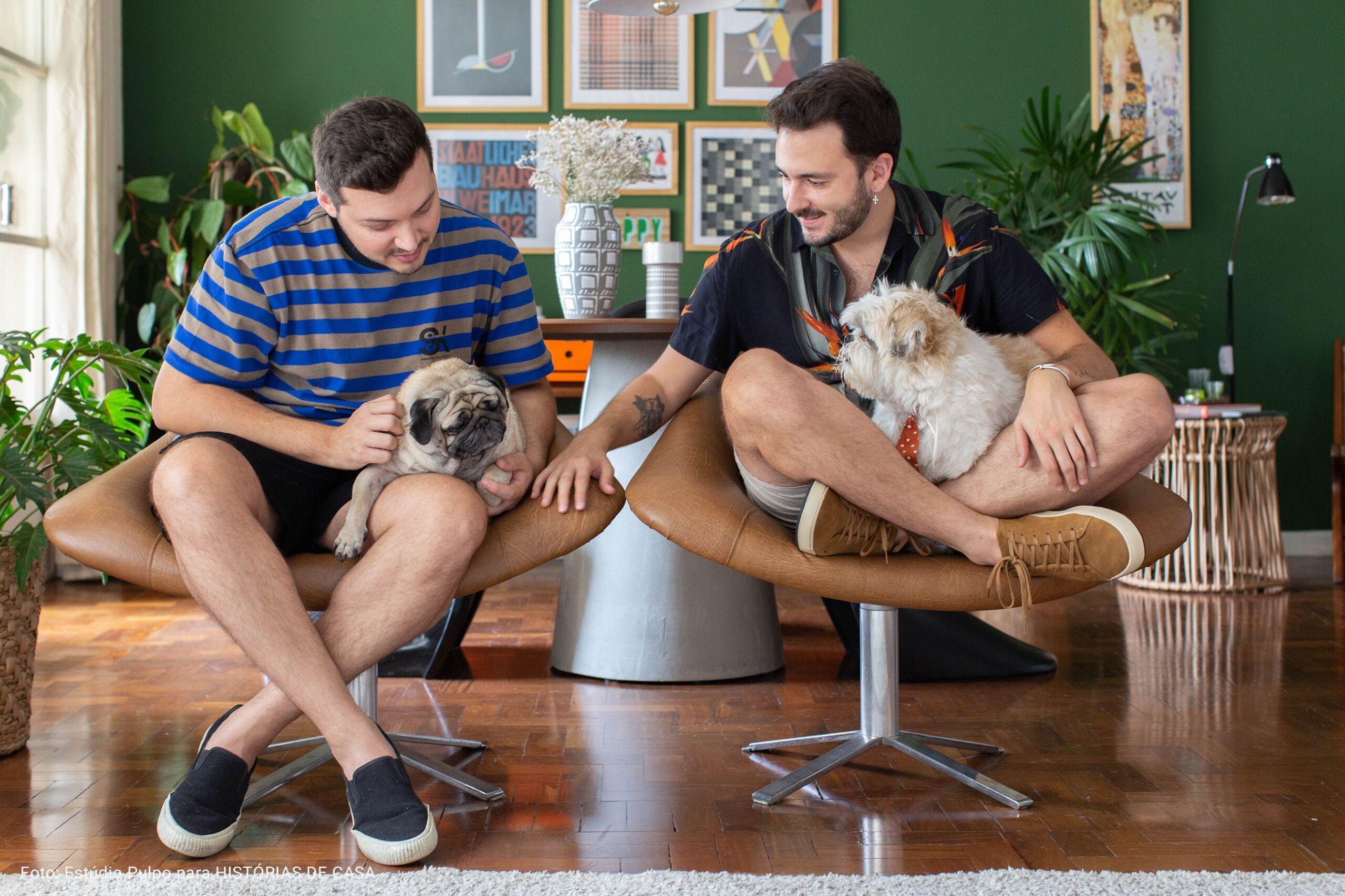 apartamento com cachorros