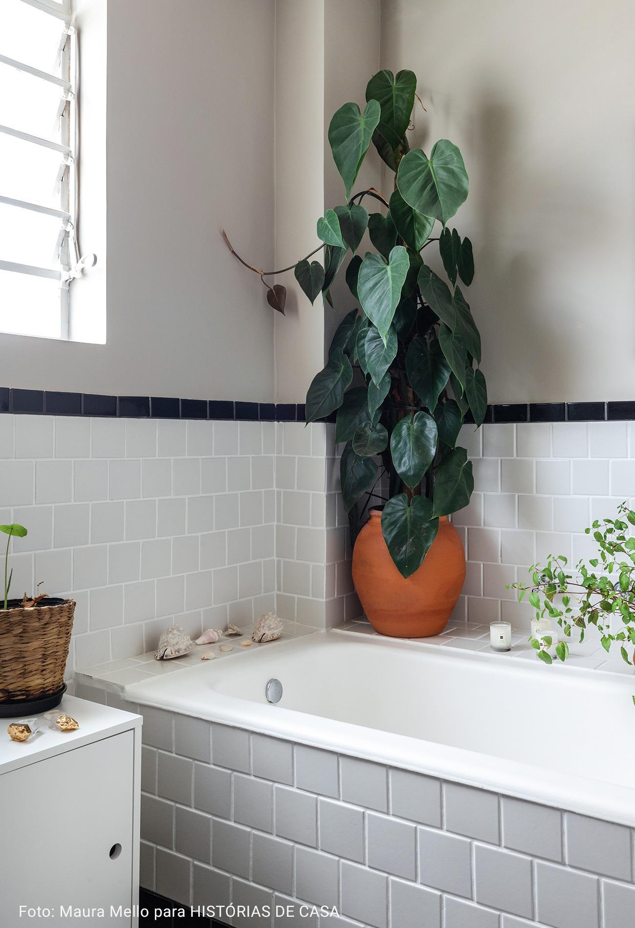 planta ornamental no banheiro