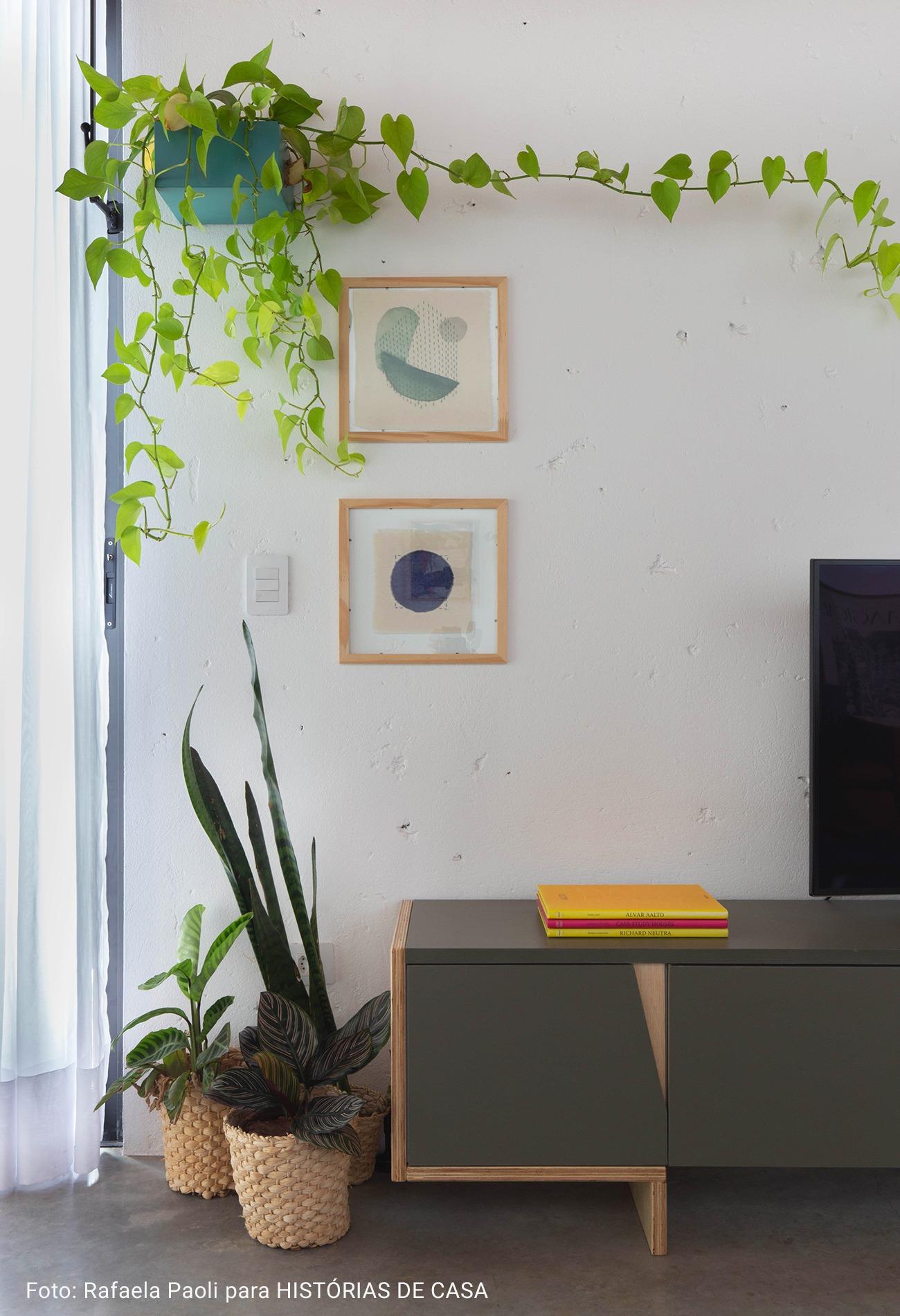 sala de televisão com plantas em cachepot de palha