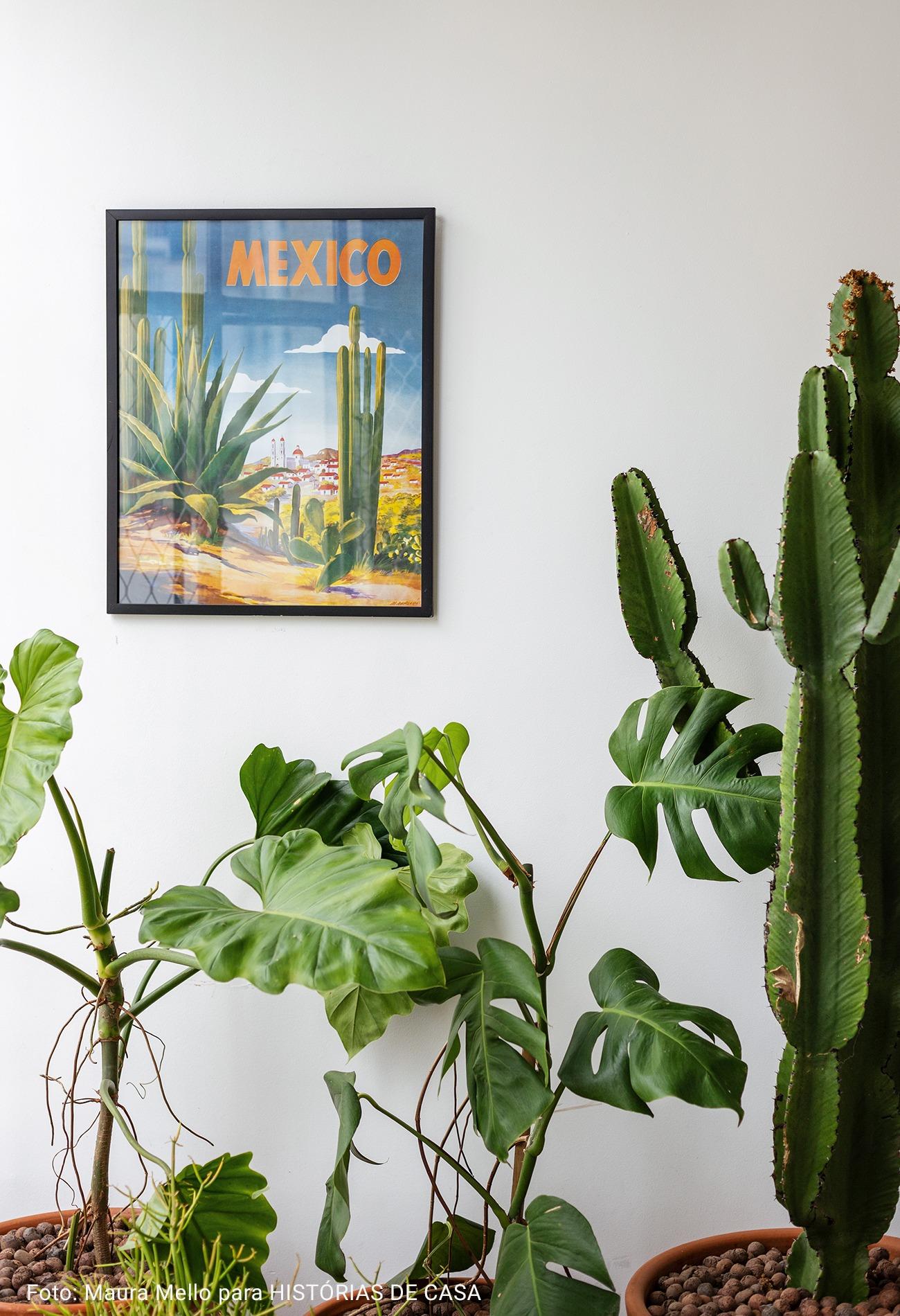 detalhe de varanda com plantas e quadro de cacto