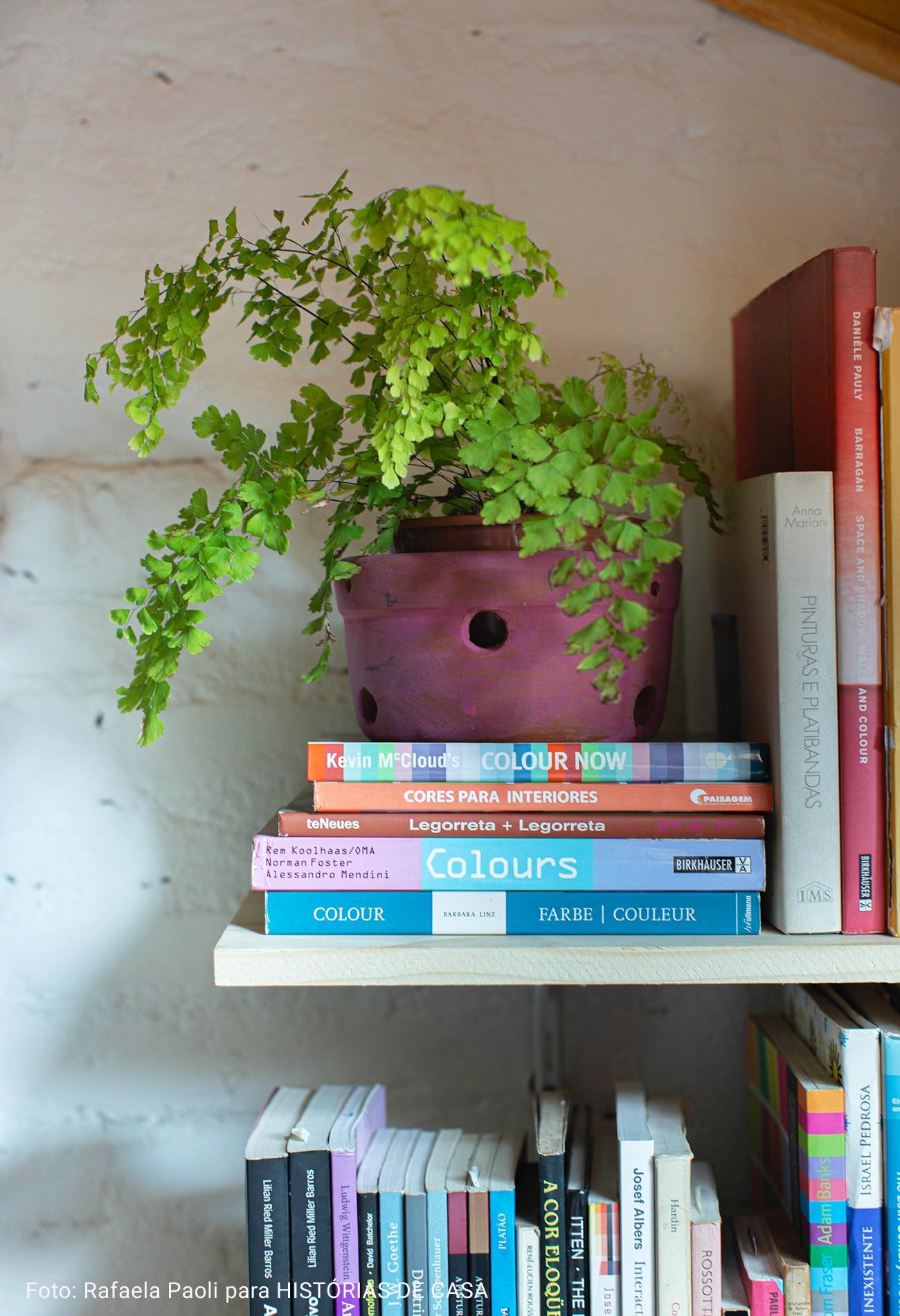 close de livros em prateleiras