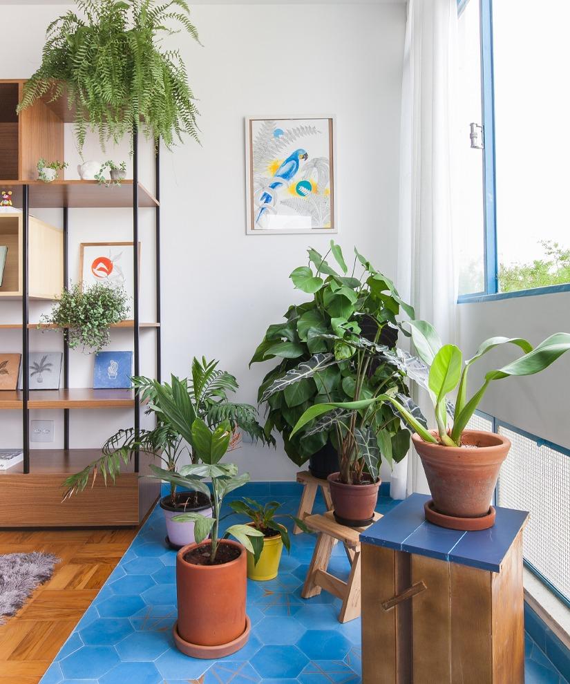 apartamento com varanda improvisada com ladrilhos hidraulicos