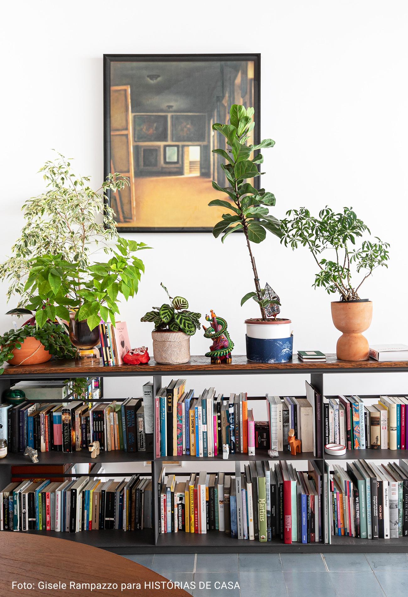 casa com prateleira baixa e plantas