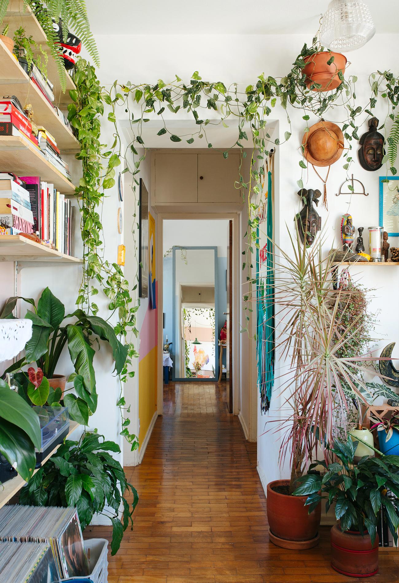 Apartamento colorido com muitas plantas, sofá cinza pequeno