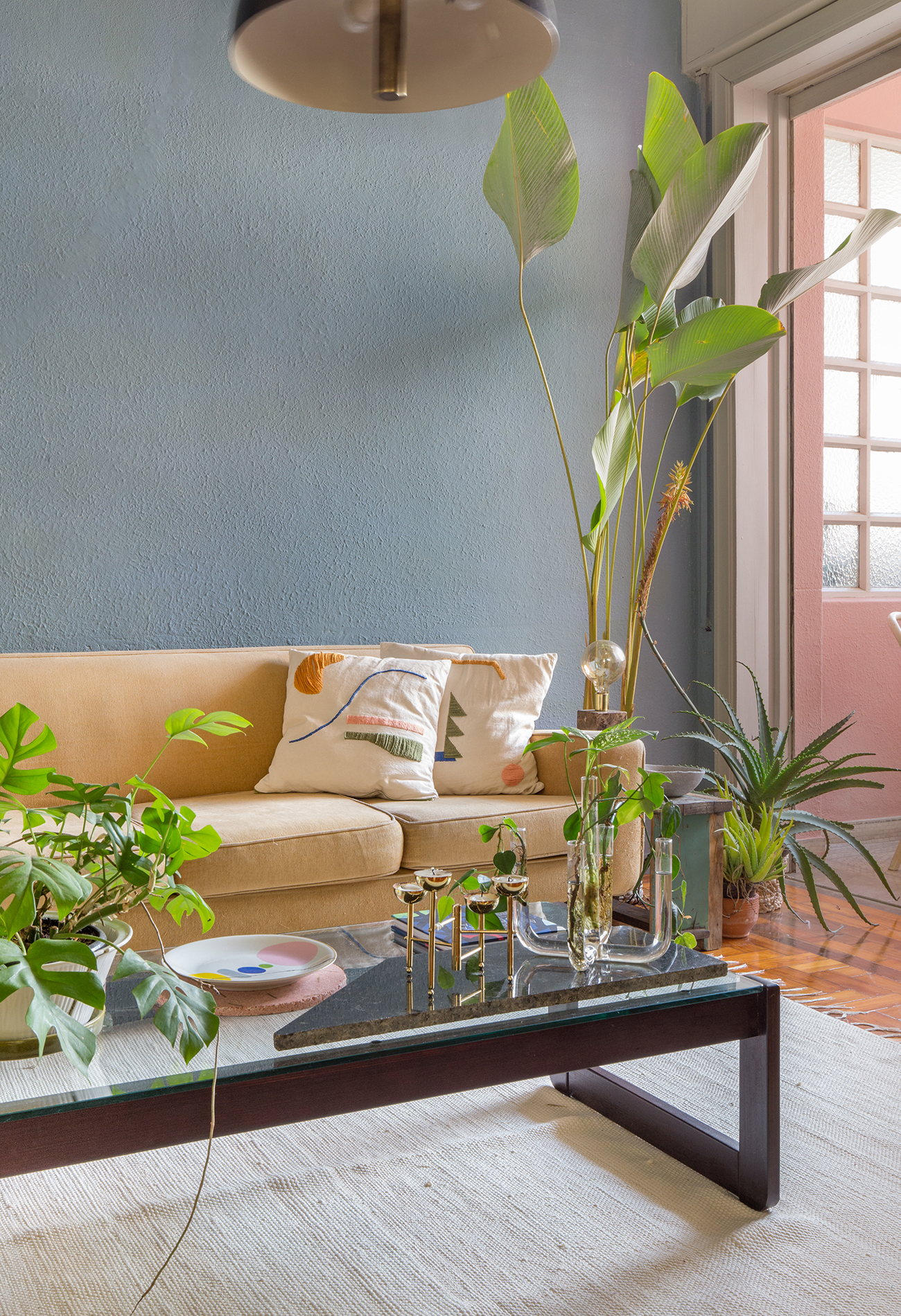 sala parede azul e rosa com mesa de centro de madeira escura e plantas
